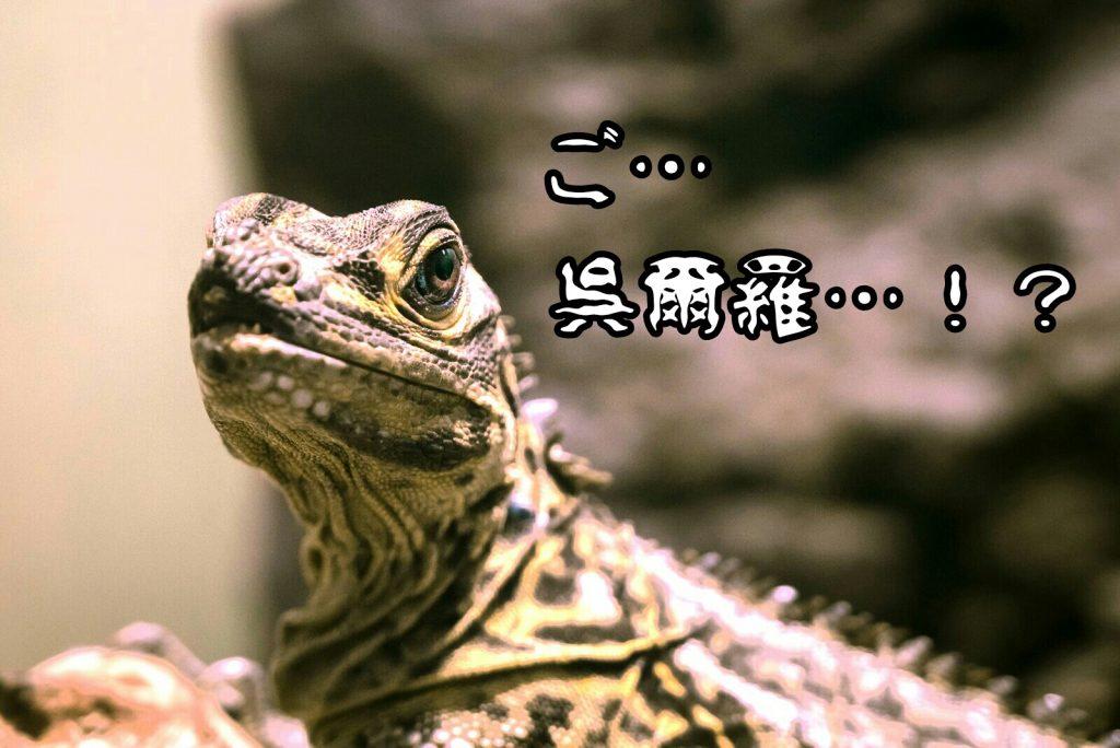 【MX4Dを堪能】『シン・ゴジラ』の圧倒的な絶望感から目が離せない