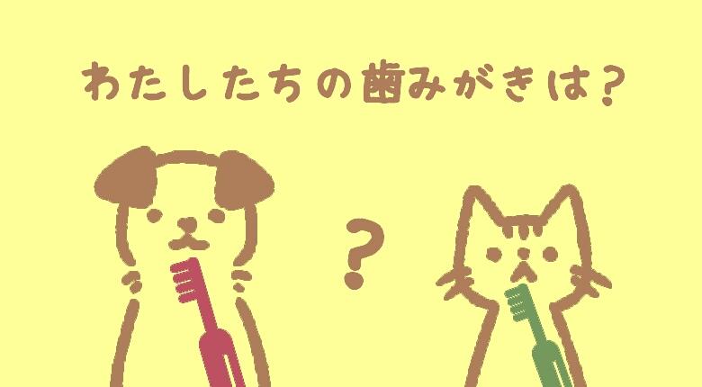 《アイキャッチ》ペットは歯みがきしなくていいの?