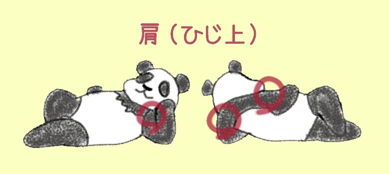 《イラスト》パンダのひじ上