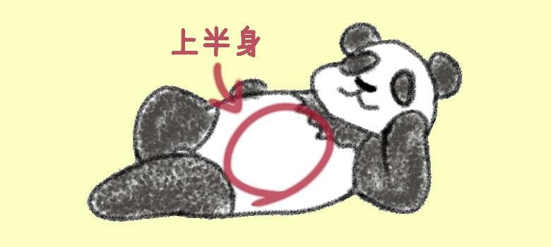 《イラスト》パンダの上半身