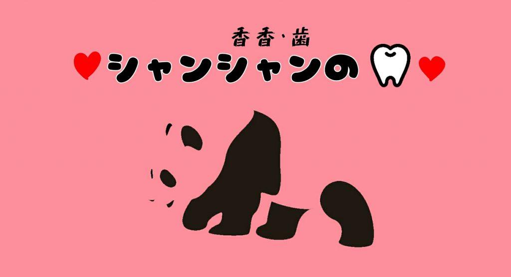 上野動物園の人気者シャンシャンの歯!
