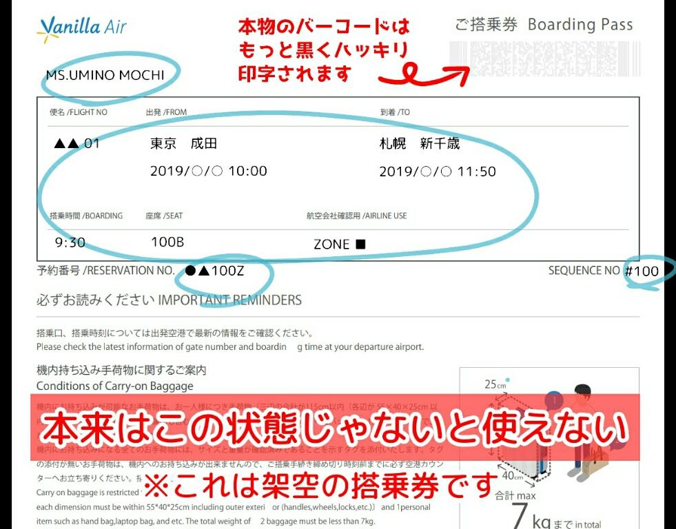 《画像》搭乗内容が記載された搭乗券